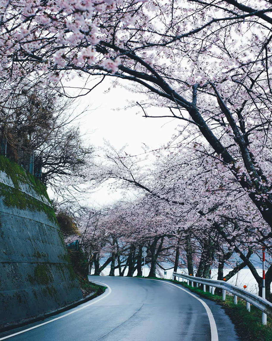 The Beauty Of Everyday Life In Japan Captured In 15