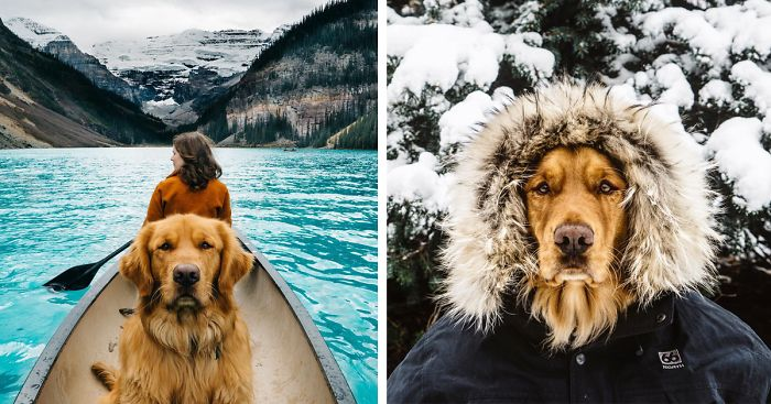 Human Takes His Dog On Epic Adventures, Proves That Dogs Are The Best Travel Buddies thumbnail