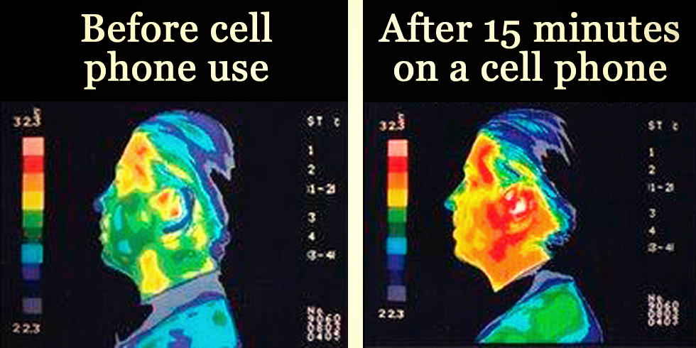 cell phone radiation essays Health effects from cell phone tower radiation by karen j rogers the safety of cell phone towers is the subject of extensive scientific debate.