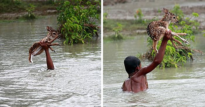 15 Heartwarming Pictures That Will Restore Your Faith In Humanity thumbnail