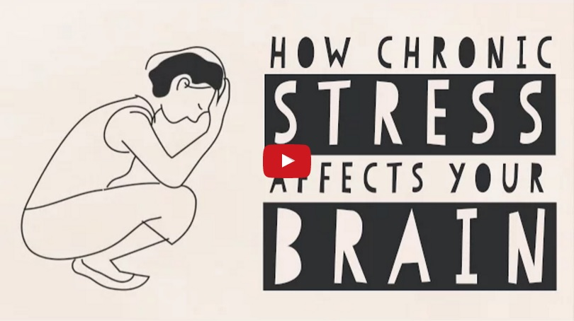 The Science Behind How Stress Affects Your Brain thumbnail