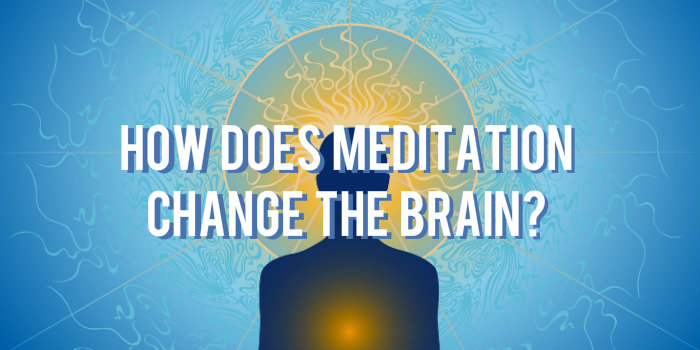 Harvard Study Unveils What Meditation Literally Does To The Brain thumbnail
