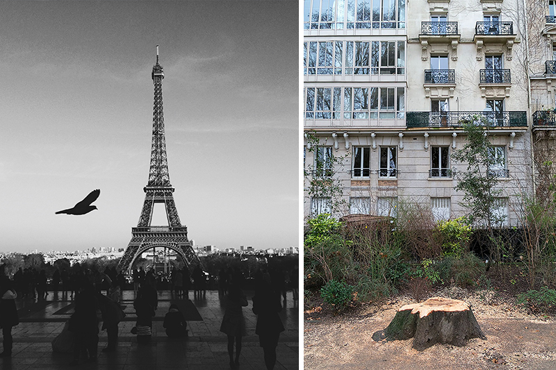 These 13 Pictures Reveal The Unexpected Truth Behind Famous Tourist Attractions thumbnail