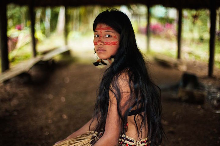 Superb Amazon Rainforest