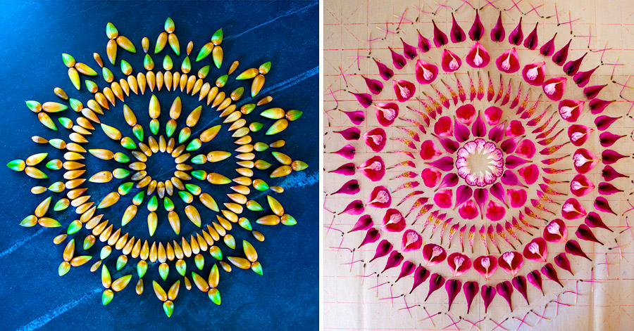 15 Extremely Beautiful Mandalas Made Out Of Wild Flower Petals thumbnail