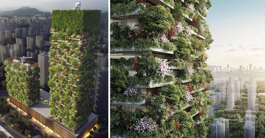 Chinese City Plans To Built The First Vertical Forest Of Asia thumbnail