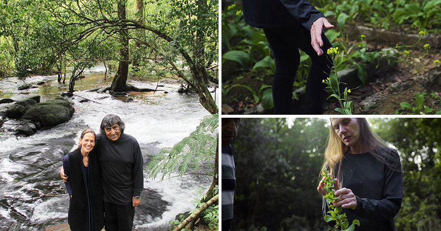 Couple Replants Rainforest In 26 Years. Now It's A Breathtaking Wildlife Sanctuary.