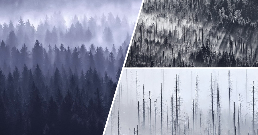 Colorblind Photographer Turns His Handicap Into A Strength And Creates Beautifully Structured Landscape Photos