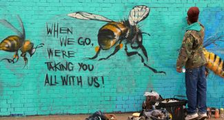 Street Artist Educates People About The Fatal Impacts That The Death Of Bees Has On Everyone Of Us