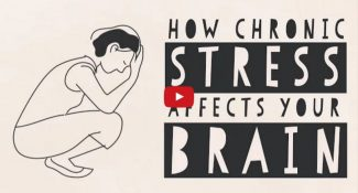 The Science Behind How Stress Affects Your Brain