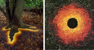 11 Photos Of Magical Land Art Beautifully Formed In Nature